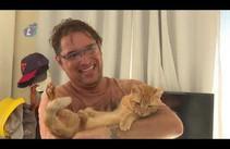 Conheça o circuito in door para deixar de lado o estresse do felino- Canal Pet Bloco 1