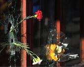 Parisienses vão às ruas prestar homenagens às vítimas de atentado