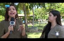 Vacinação antirrábica acontece em Aracaju