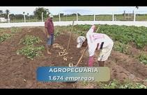 Sergipe registra aumento no número de empregos na indústria e na agropecuária