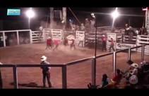 Pião morre em rodeio ao ser pisoteado por touro em Rondônia